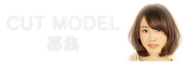 カットモデル募集